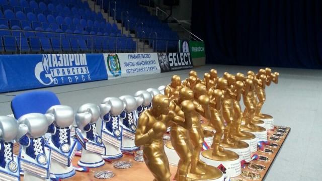 27 открытые Всероссийские соревнования по боксу