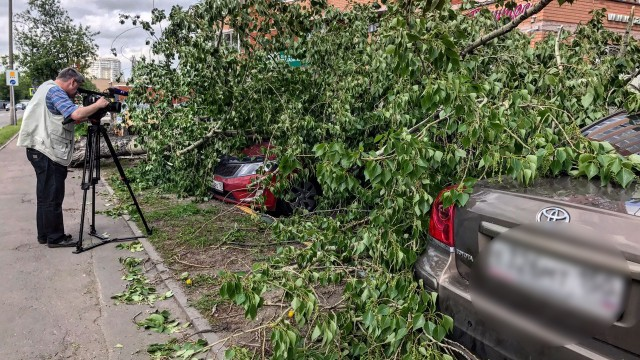 Последствия вчерашнего урагана
