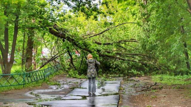МЧС предупреждает о неблагоприятных погодных условиях