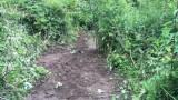 Минэкологии решило проблему загрязнения водного объекта в Люберцах