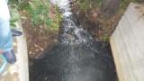 Минэкологии расследует загрязнение реки в Люберцах